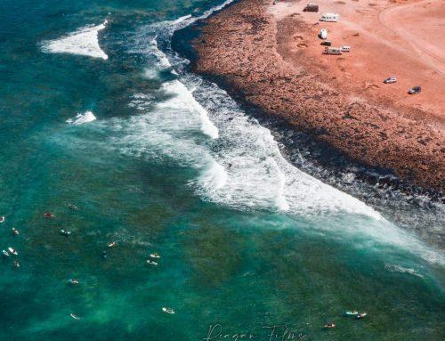 Sessioni Surf Majanicho – 19 Settembre 2020