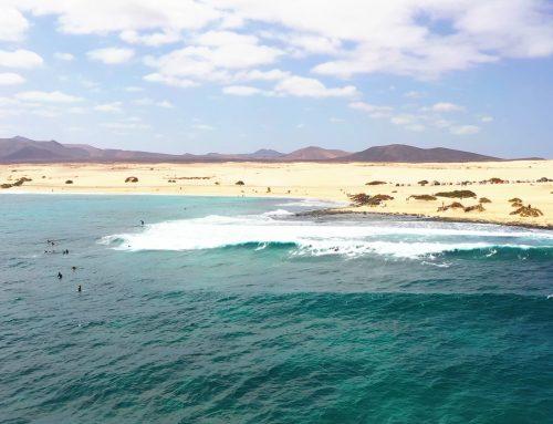 Nuova sessione surf alle Dune di Corralejo